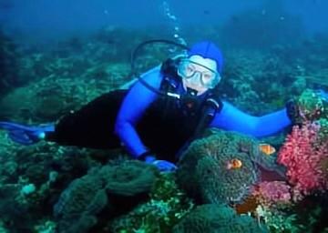 CD Diving
