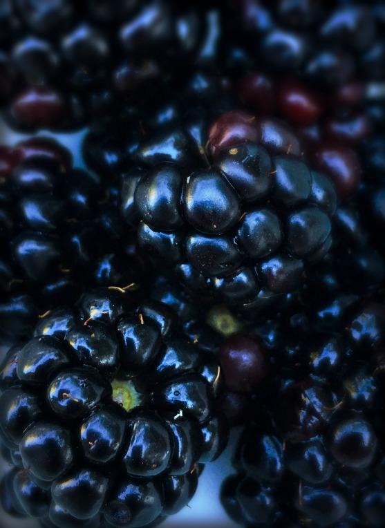 berries-13